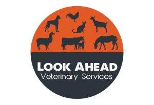LookAheadVet_logo