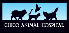 chico animal hosp