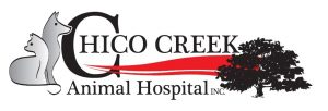 www Chico Creek Animal Hospital